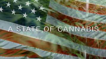 Free download A STATE OF CANNABIS - TRAILER video and edit with RedcoolMedia movie maker MovieStudio video editor online and AudioStudio audio editor onlin