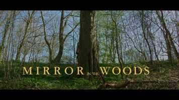 Free download Blackmagic Pockect Cinema Camera Short Film - MIRROR IN THE WOODS (UncannyEpisodes) HD video and edit with RedcoolMedia movie maker MovieStudio video editor online and AudioStudio audio editor onlin