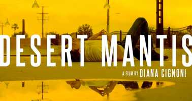 Free download Desert Mantis Trailer June 2020 video and edit with RedcoolMedia movie maker MovieStudio video editor online and AudioStudio audio editor onlin