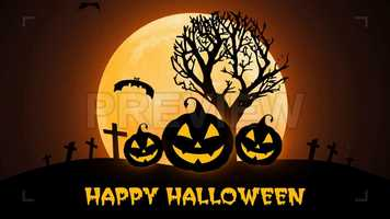Free download Halloween Pumpkins, Moon And Bats Stock Motion Graphics video and edit with RedcoolMedia movie maker MovieStudio video editor online and AudioStudio audio editor onlin