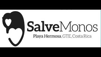 Free download Salve Monos 2021 video and edit with RedcoolMedia movie maker MovieStudio video editor online and AudioStudio audio editor onlin