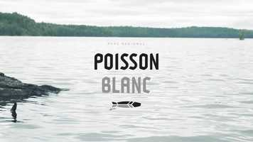 Free download Fishing Trip  |  PARC RGIONAL DU POISSON BLANC video and edit with RedcoolMedia movie maker MovieStudio video editor online and AudioStudio audio editor onlin