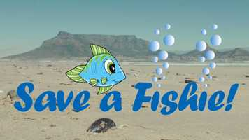 Free download Save a Fishie - Interview - April 2019 video and edit with RedcoolMedia movie maker MovieStudio video editor online and AudioStudio audio editor onlin